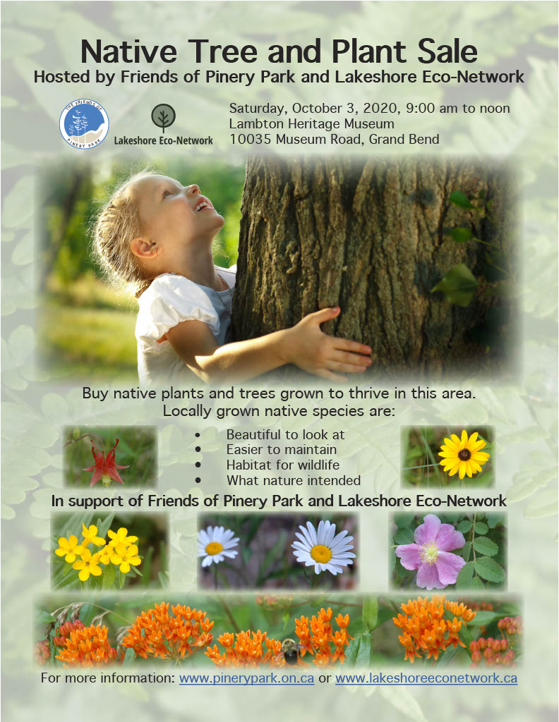 Fall 2020 Native Tree and Plant Sale Flyer